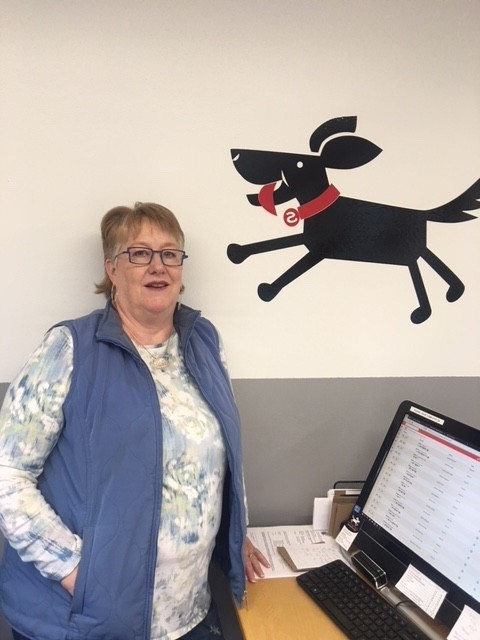 Meet Stina Hughes Of Scampers Daycamp For Dogs Parkbench