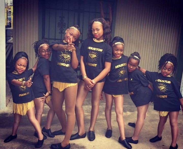 Houston Diamonds Majorette Dance Team Non Profit Organizations In Houston 77004 Parkbench