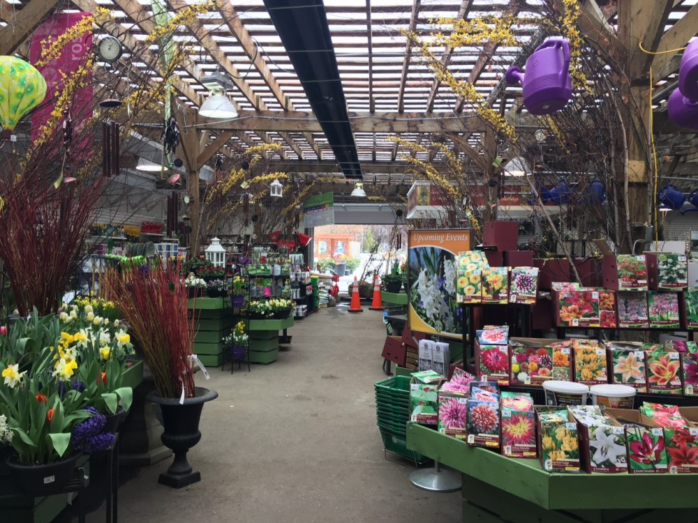 Outstanding Selection Of Hardy Nursery Stock 3000 Sq Ft Retail With Everything You Need For Your Garden Including Expert Advice Patio Furniture