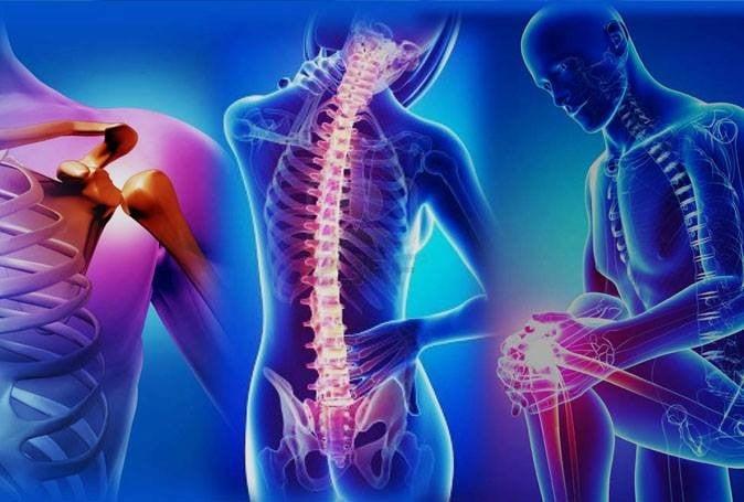 Полное обследование позвоночника и суставов