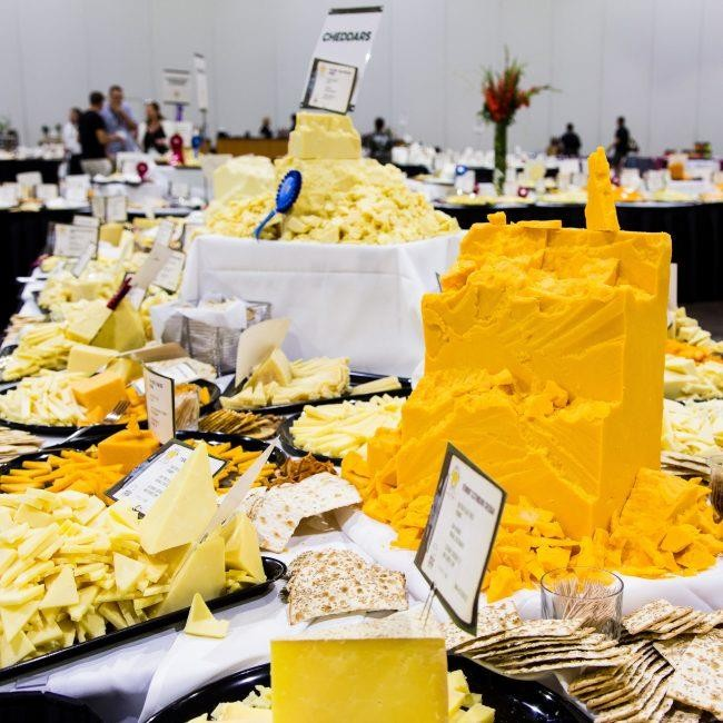 """Highlands Ranch Rec Center Westridge: There's A """"Festival Of Cheese"""""""