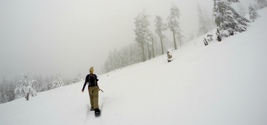 Get Those Snowshoes Ready And Check Out The Trail Up Wilson Mountain In Peachland Parkbench