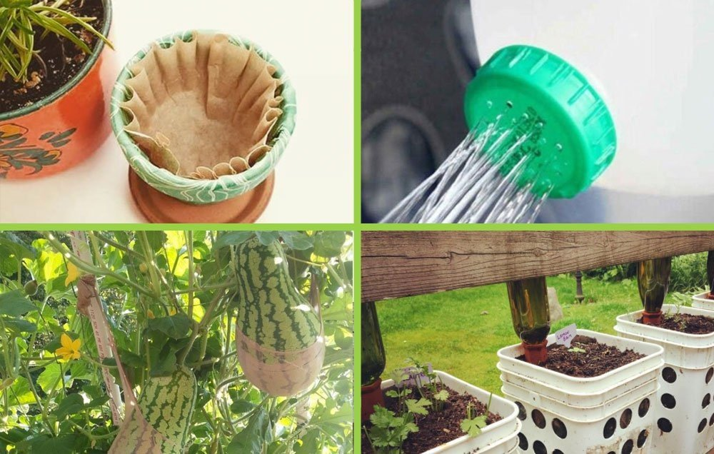 10 Wacky Gardening Hacks From The Internet That Actually Work