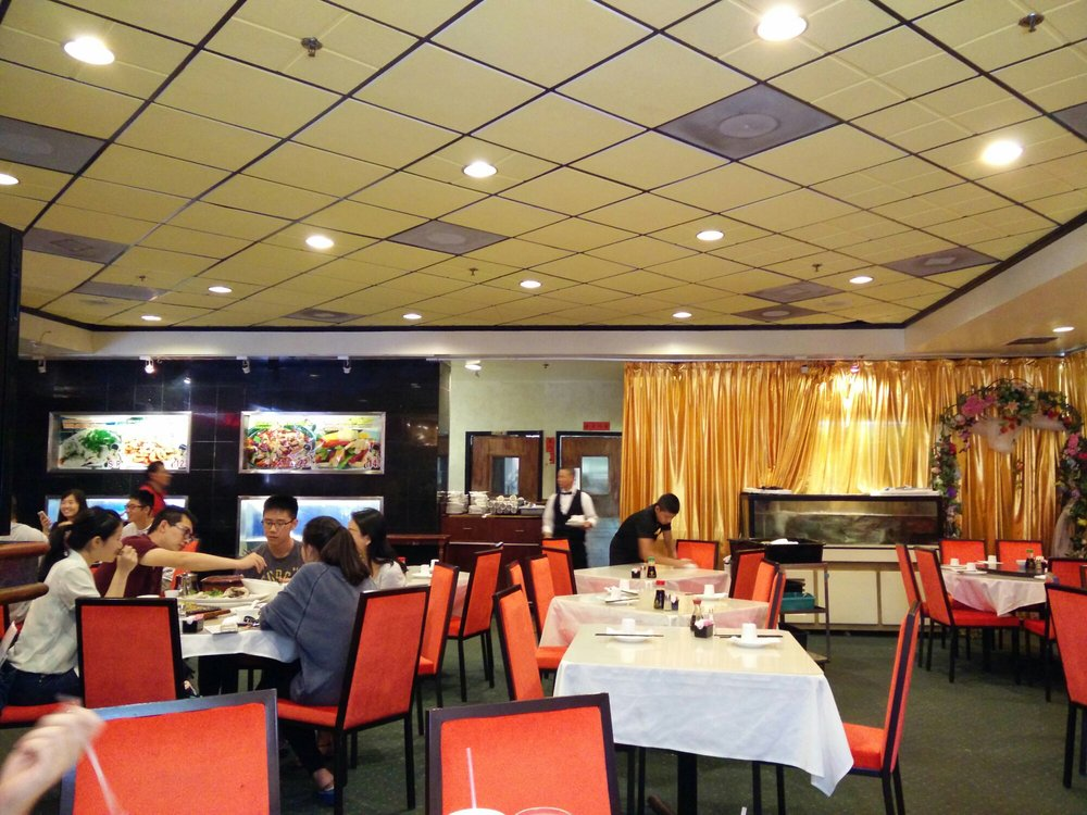 oriental pearl restaurant business plan Oriental pearl tower, shanghai - address the tower also has a revolving restaurant oriental pearl tower information shanghai before you plan your trip.