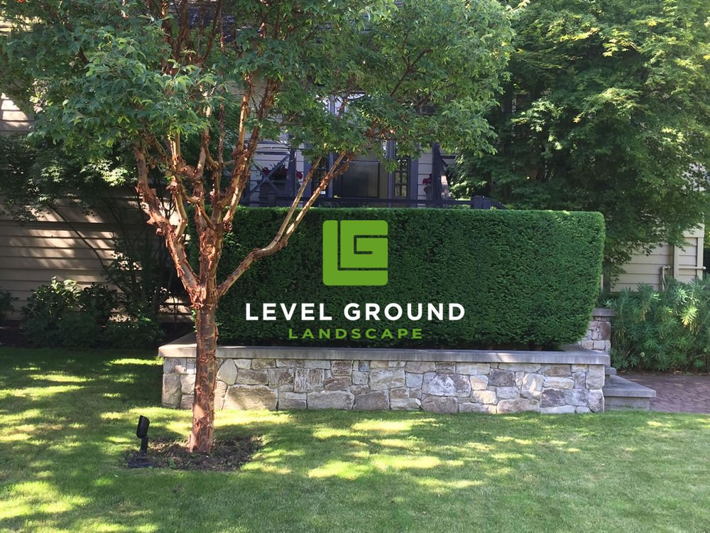 Level Ground Landscape