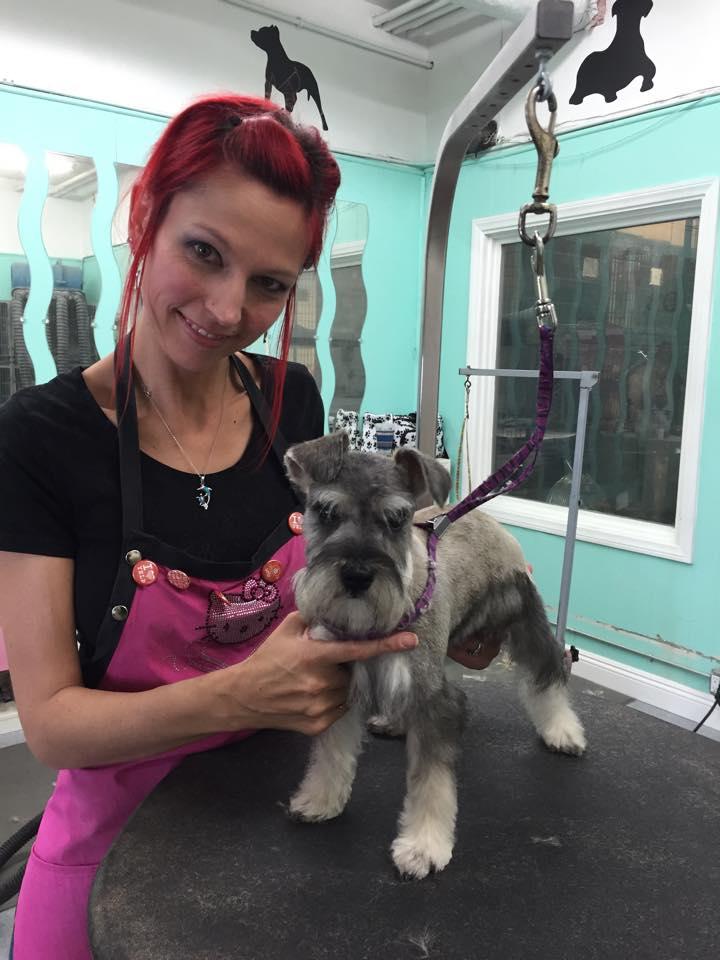Tlc Pet Shop & Grooming